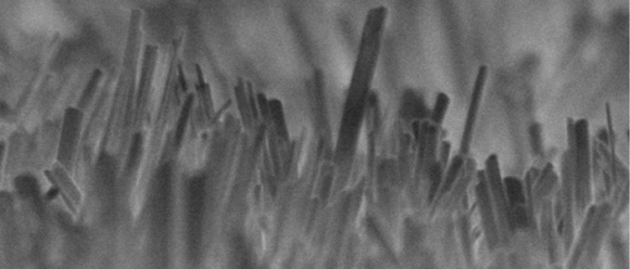 High aspect ratio surfaces like these on etched Titanium prevent biofilm formation but allow MSCs growth